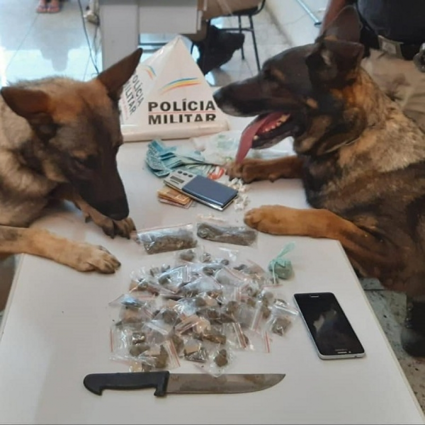 Policia Militar prende 5 suspeitos de tráfico e apreendeu grande quantidade de drogas no bairro Camilo