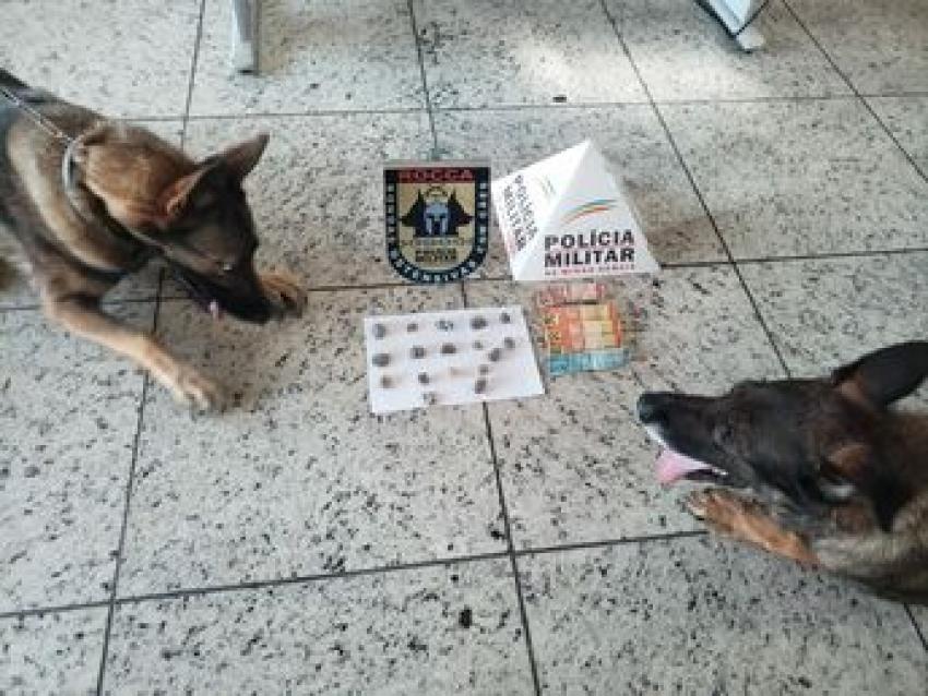 Policia Militar prende suspeitos de trafico e apreende drogas no bairro Santo Antônio, com ajuda dos cães da ROCCA