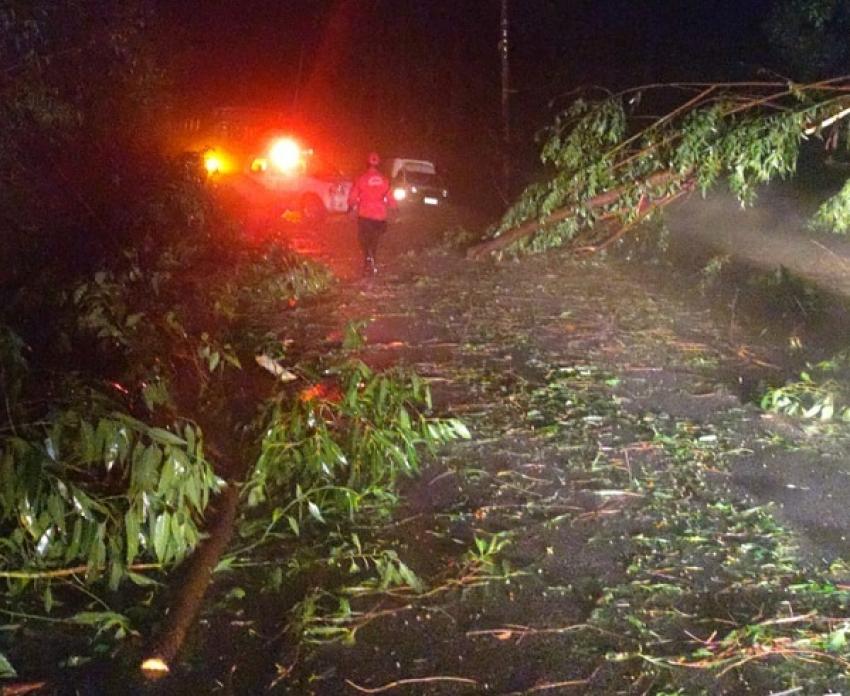 Uma  Chuva forte atingiu Pedro Leopoldo e causou estragos